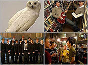 Harry Potter celebrations and activities in Boston