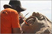 2011 Revere Beach Sand Sculpting Festival