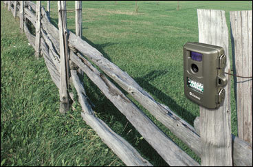 Rugged security while you're away Swann's OutbackCam DVR-470 may give you extra peace of mind while you are traveling. This portable camera and video recorder can be mounted to a tree, fence, or flat surface on your property, where it can record hundreds of photos and hours of video on a secure digital card (2GB card included, but you can upgrade to a 32GB card). Its 2-megapixel camera captures AVI videos at 30 frames per second and JPEG images - both up to 32 feet away with its night vision feature - and can stamp them with date and time information. The rugged, waterproof device runs on four AA batteries and sells for $109.99 at HomeDepot.com. Or contact Swann at 562-777-2551, www.swann.com . KARI BODNARCHUK