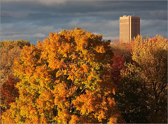 No. 314: University of Massachusetts at Amherst Left, the UMASS Amherst library as seen over the trees from McGuirk Alumni Stadium.