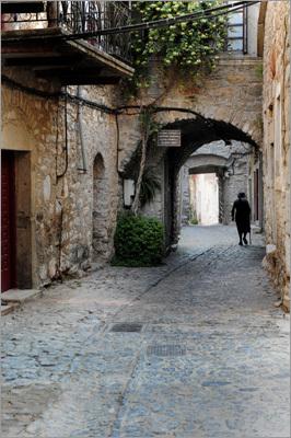 The cobblestone streets of Mesta Village.