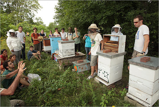 Boston's first Tour de Hives featured five different bee hives around the city through a nine-mile bike ride that included sites in Mattapan, Roslindale, Jamaica Plain and Brookline. Click through to see scenes from the event.