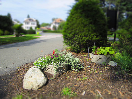 Shrubs, pots and decorative stones welcome anyone entering the Perkins campus.