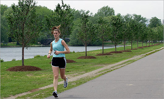 Spend some time on the Esplanade strolling along the Charles, riding a bike, or taking in the view. Boasting six miles of paths along five miles of riverbank, this refreshing park brings you closer to nature without leaving town. Free of charge.
