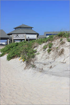 Beyond the vast parking lot, RV campground, and bathhouse facilities are the sandy dunes and expansive beach at Hampton Beach State Park.