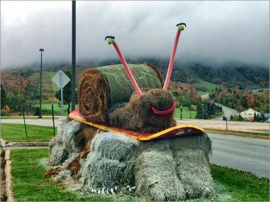 """Sammy the Snowboarding Snail"" at Mountain Green Condos."