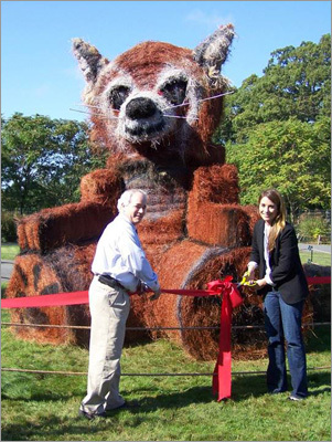 New England Zoo president John Linehan and Town of Killington spokesperson Suzie Dundas celebrated the panda likeness the town awarded to the Franklin Park Zoo in honor of the baby red pandas born over the summer.