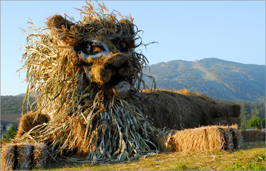 The Killington Hay Festival , a five-week celebration of fall in Vermont, runs through this weekend, featuring a host of creative animal structures carved out of hay. At left, a hay lion greeted visitors at the base of Killington Mountain.