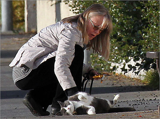 Anna Bjornsdottir, the Icelandic former beauty queen and actress whose tip led to the capture of James 'Whitey' Bulger, crouched outside her Reykjavik apartment in September to pat her cat, Mosa.