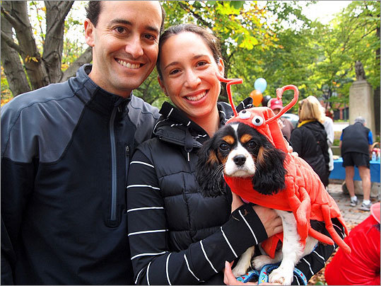 Max and Jane Osofsky, who live in Beacon Hill, posed with Dixie, a four-month-old Cavalier King Charles spaniel masquerading as a lobster.