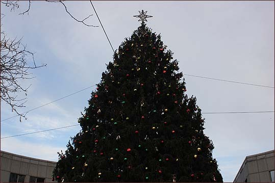 The tree at Faneuil Hall was decorated but unlit in advance of the evening's festivities.