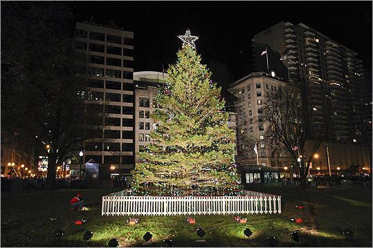 Boston Common tree lighting ceremony & Boston Common tree lighting ceremony - Boston.com azcodes.com