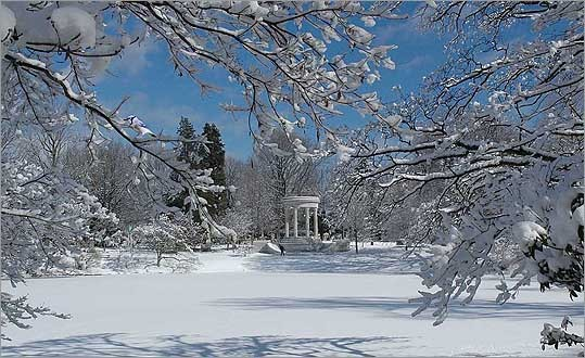 A winter scene at Halcyon Lake.