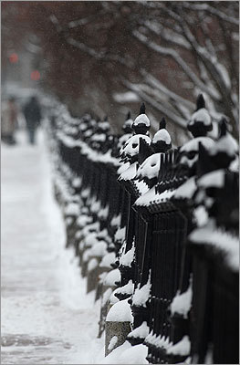 An iron fence around the Public Garden accumulated snow.
