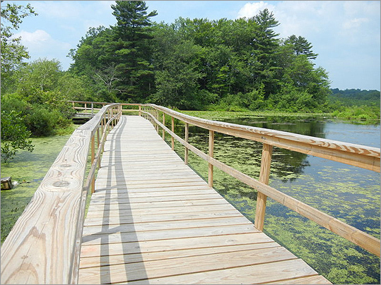 Looking for new ways to enjoy the outdoors with your family? Here are some ideas that are just a short drive away. Pictured is Stony Brook Wildlife Sanctuary, Norfolk. Note: Read more about these ideas and get others from Roslindale resident Kim Foley MacKinnon's new book, 'Outdoors with Kids Boston.'