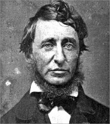 Henry David Thoreau may be best known as a philosopher, writer, and Transcendentalist, but the Thoreau Society's Annual Gathering, which begins today in Concord, exactly 195 years after since his birth, will focus on his less known role as ecologist. Through hikes, a presentation on Thoreau's contributions to climate-change science, and a keynote speech from Pulitzer Prize winner Edward O. Wilson, participants from all over the world will explore Tho­reau's writings about the relationship between people and their environment. Take a look at Thoreau's ties with Concord.