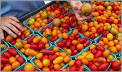Five ways to use cherry tomatoes