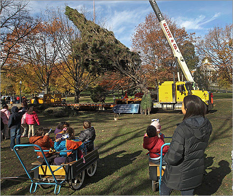 The Boston Common Christmas tree arrived on Friday as a crowd of children and Santa Claus watched. The tree is an annual gift from the people of Nova Scotia as a way to thank the Boston community for providing emergency assistance when its capital, Halifax, was devastated by an explosion in 1917. Click through for photos of some of the trees dating back to 1931