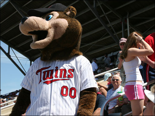 The Twins mascot, no relation to Wally, was hot in the fur suit on Sunday as Hammond Stadium warmed up to 80 degrees in the sun.