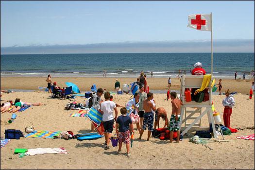 Visitors to Marconi Beach, along the Cape Cod National Seashore, often spot seals in the distance. Marconi Beach