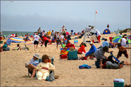 A shuttle bus takes passengers from parking lots to Coast Guard Beach between June and Labor Day each summer. Daily entry to the beach is $15. Coast Guard Beach