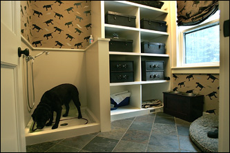 Decorating a mcmansion for Dog themed bedroom ideas