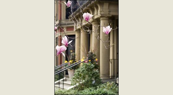 Boston Massachusetts - Marlborough Street