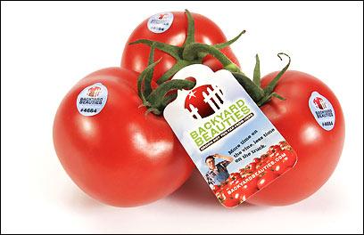 Backyard Farm's tomatoes