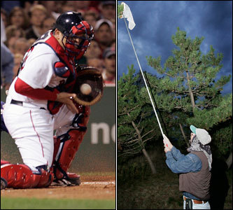 Current job: Red Sox backup catcher Could have been: Entomologist He's seemingly the only guy on the planet who can reliably catch the fluttering unpredictable flight of the knuckleball. Imagine the heretofore elusive and undiscovered species of butterflies and moths he could rein in and study? And we can't think of a better person better suited to protect the Monarch butterfly.