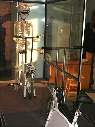 Face off with a skeleton! As you pedal the bike, this cycling skeleton moves along with you to show what's going on underneath your skin.