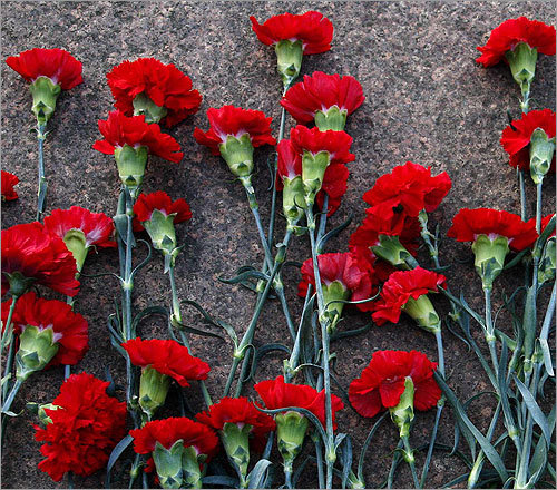 Carnations are the perfect way to top off a Valentine's Day bouquet. After all, they represent deep love and affection, as well as admiration.