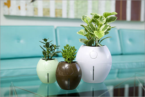 Grobal , $24.95, comes in eight colors Available at Velocity Art & Design velocityartanddesign.com If it's a green thumb you lack, these planters come with their own self-watering system.