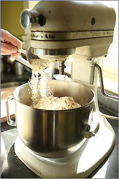 When he puts the sprout pulp into a stand mixer, it comes together magically to form a dough.