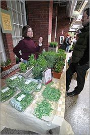 Allen Farm offers pea greens, pesto, salads, and more at Wintertime Farmers' Market.