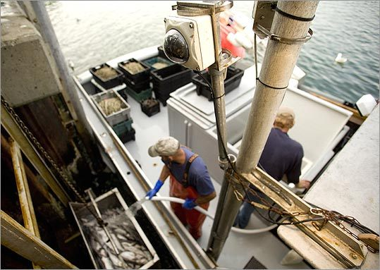 Frustrated with the old catch limit system, Chatham fisherman John Our signed on to a new yearly quota system and allowed his boat, 'Miss Fitz,' to be outfited with cameras that document what he brings in and prove that he's following the rules, as part of a pilot project.