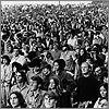 My Woodstock