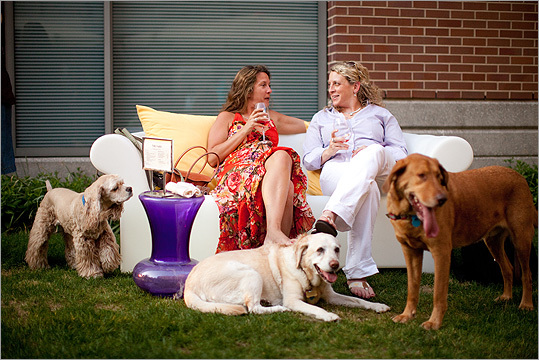 Surrounded by dogs, Heather Seligman (left) and Jill Ort, both of Chelsea, chatted during the event.