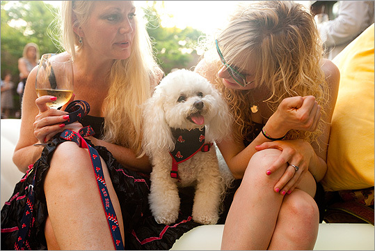 Mother and daughter Linda (left) and Abby Schommer of Groton with their Bichon Frise Bella May. 'We're coming again,' Linda said. 'It has my two favorite things, dogs and cocktails.'