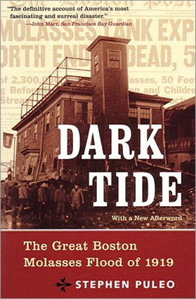 'Dark Tide: The Great Boston Molasses Flood of 1919' by Stephen Puelo
