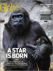 Nov. 21, 2010 cover