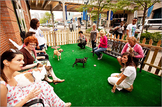 Roll over, Beethoven: there's a new canine hotspot in town. The Seaport Hotel's TAMO Terrace is joining the likes of the Liberty Hotel's Yappier Hour with its own spin on things. Held Wednesday nights from 5:30 to 7:30, Yappy Hour is an after-work get-together for dogs and their owners.