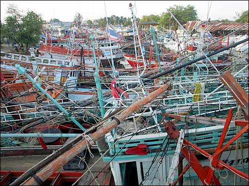 A Thai fishing village's jetty is heavily damaged.
