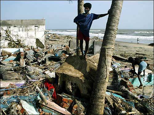 A man stands among the debris of his house at Nagapattinam beach, 219 miles south of of Madras.