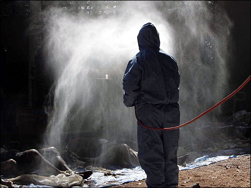 A medical worker sprays dead bodies with disinfectant in Phang-Nga, 110 km north of Phuket.