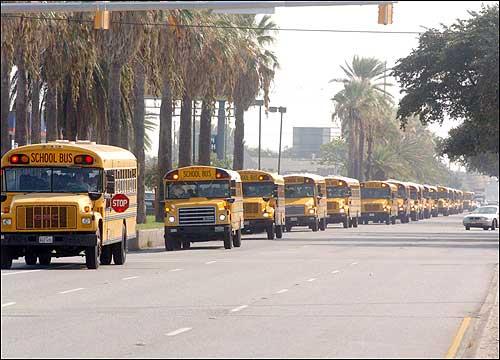 A line of school buses left the Galveston Community Center in Galveston,  Texas, on