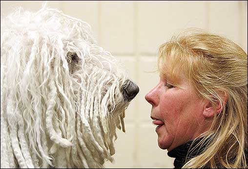 Jill Mickley struck a similar pose with Quincy, a Komondor. Komondors, or Hungarian sheepdogs, have long, nappy white fur that helps them blend in with their sheep.