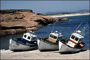Magdalen fishermen