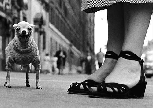 'New York, 1946'