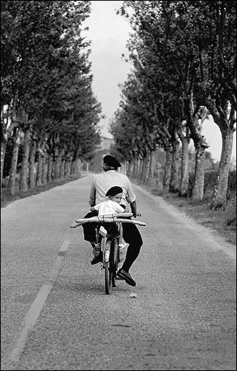 'Provence 1955'