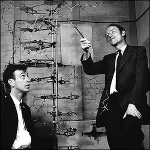 Watson & Crick.